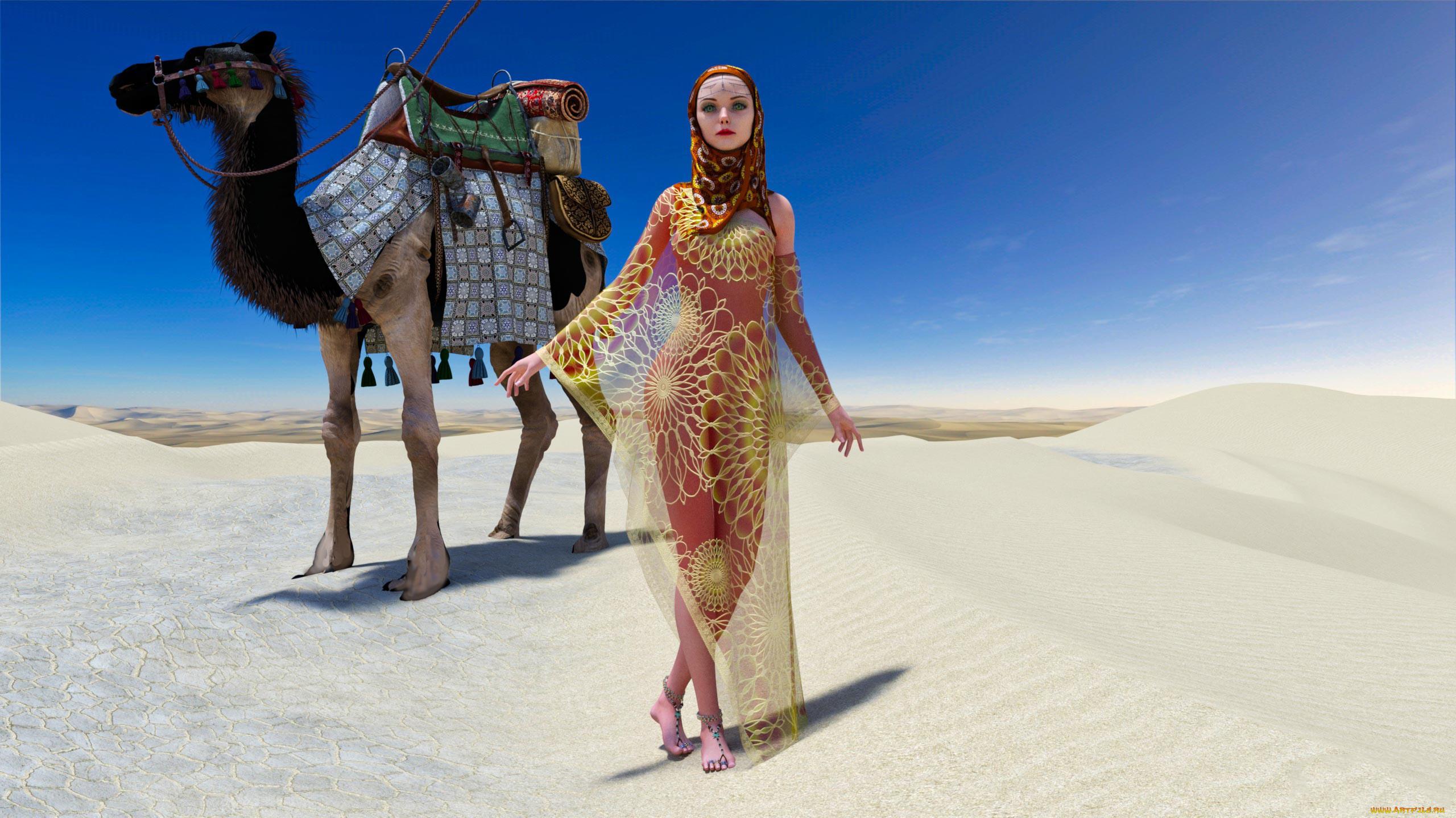 постер пустыня и верблюды и люди семьей всегда